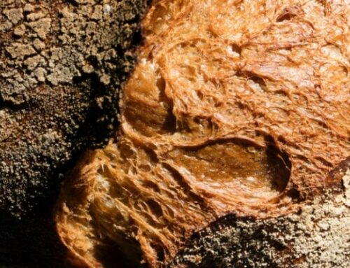 ¿Qué sabemos del pan?